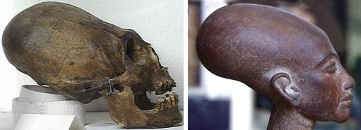Skull Peru comparison