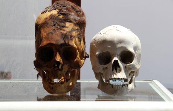 Skull061113bX